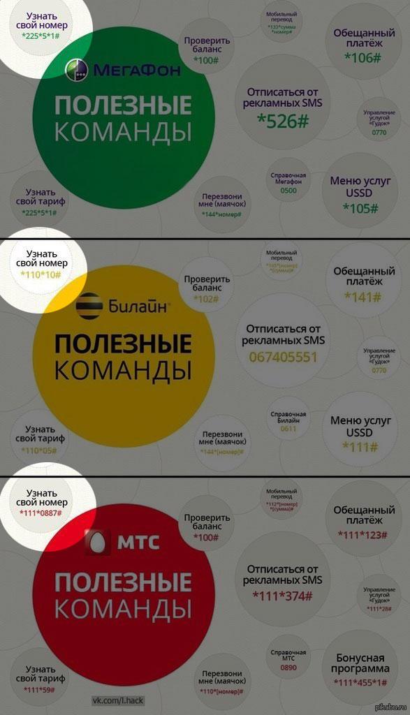 гинекологом Московской номер телефона на 10 минут количество человек вилле