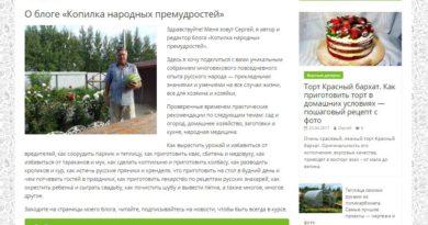 Интервью 2. Денис Повага — Сергей Карпов | доход с блога, больше средней ЗП, по Хабаровскому краю, на которую можно жить…