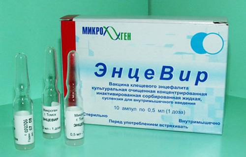 Прививки от клещевого энцефалита (схема прививок)