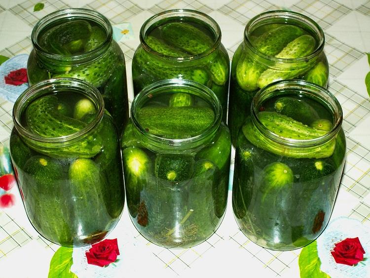 Огурцы на зиму хрустящие без стерилизации – рецепты консервирования пошагово с фото