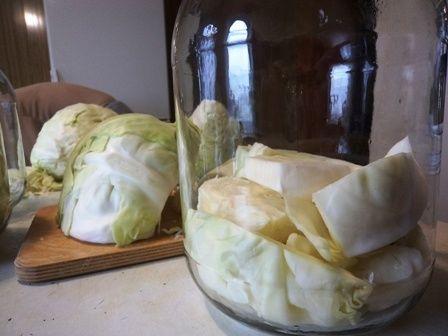Как солить капусту большими кусками