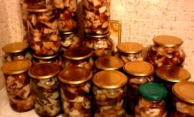 Как замариновать грибы подтопольники