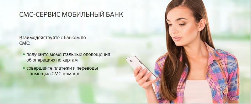 При подключении мобильного банка чем отличается полный от экономного