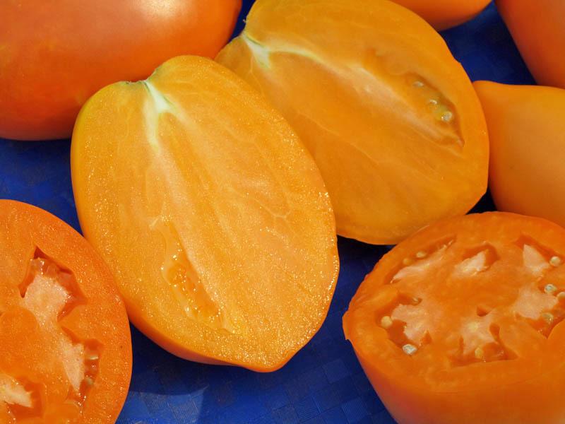 Лучшие сорта томатов для Сибири в теплице и для открытого грунта с фото и описанием Отзывы